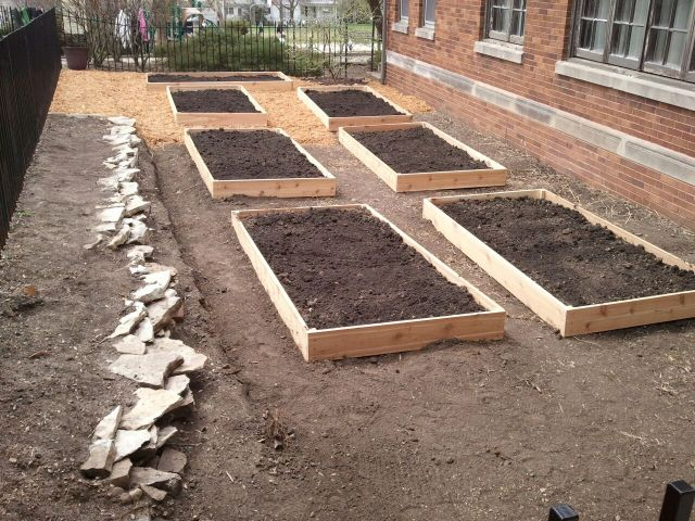 Garden Progress 2